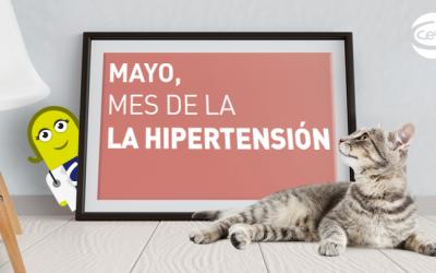 Mes de mayo, mes de la hipertensión