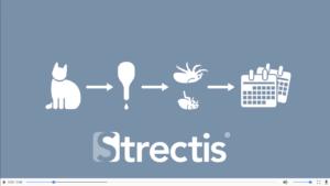 Cómo aplicar Strectis
